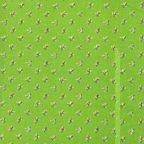 Lilly lorraine vert